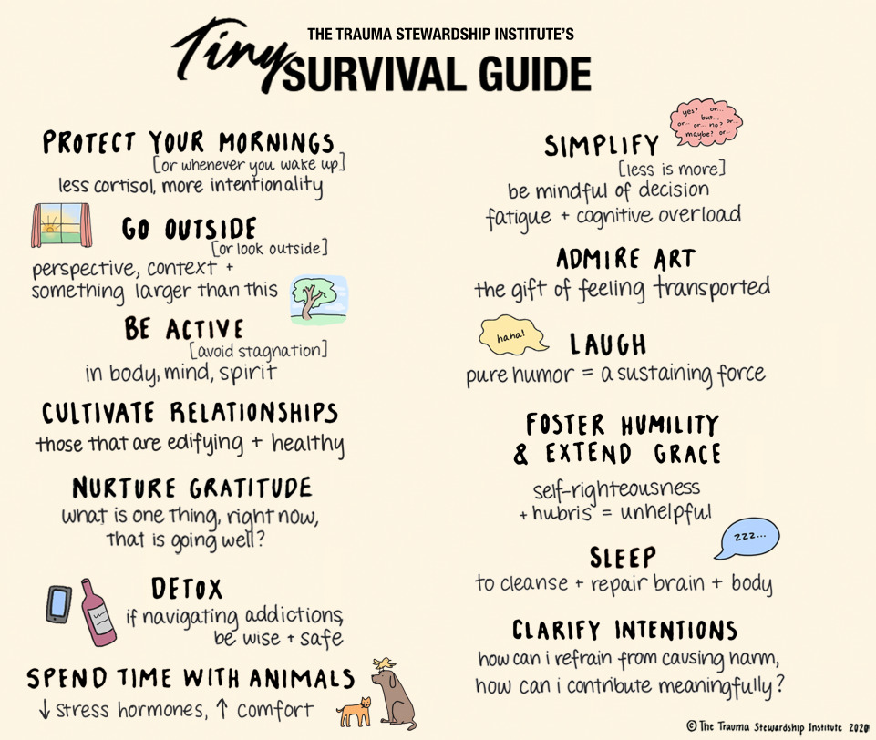 Trauma Stewardship's tiny survival guide image